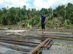 kayu-ilegal_20180424_170643.jpg