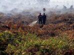 kebakaran-hutan-di-bengkalis-makin-parah.jpg