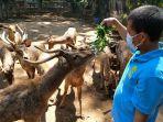 kebun-binatang-bandung-zoological-garden_20210729_150452.jpg