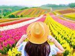 kebun-bunga-warna-warni-di-hokkaido-jepang.jpg