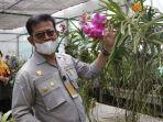 kementan-dorong-industri-florikultura-berorientasi-ekspor.jpg