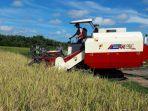IPB: Kebijakan Amran Mampu Jaga Produksi dan Harga Pangan Stabil