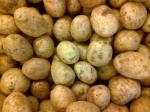 kentang-potato.jpg