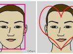 kepribadian-seseorang-bisa-terlihat-dari-bentuk-wajahnya-pemilik-wajah-hati-memiliki-intuisi-kuat.jpg