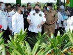 Ketua DPD RI Berharap Sukses Pertanian di Barru Diikuti Daerah Lain di Sulsel