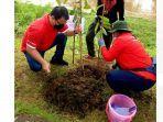 Mulai Hal Kecil dari Tanam Pohon, Basarah Ingin Selamatkan Paru-paru dari Udara Kotor