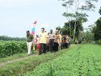 Bambang Soesatyo: Berharap Produktifitas Jagung di Kabupaten Kebumen Meningkat