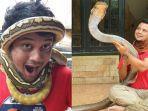 kolase-foto-panji-petualang-bersama-ular-peliharaannya.jpg
