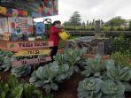 Wakil Ketua DPR Minta Fungsi Lahan Tidur Dijadikan Pertanian: Cegah Krisis Akibat Pandemi