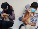 kucing-mendapatkan-suntikan-vaksinasi-rabies-di-tangerang_20210303_180121.jpg