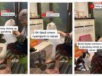 kucing-viral-antri-minta-digendong-nenek.jpg