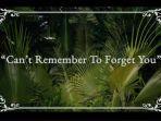 kunci-gitar-dengan-lirik-lagu-cant-remember-to-forget-you-shakira-feat-rihanna.jpg