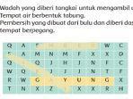 kunci-jawaban-tema-4-kelas-2-sd-halaman-88.jpg