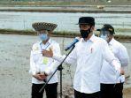 Jokowi: Kita Tidak Perlu Impor Beras Tapi Hitung-hitungannya Harus Pasti