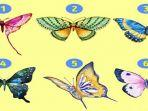 kupu-kupu-tes-kepribadian11.jpg