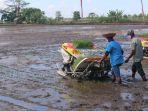 Kementan Berharap Asuransi Dimanfaatkan untuk Cover Lahan Pertanian di Banjar