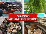 marine-aquagriculture.jpg