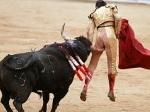 matador1.jpg