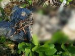 mayat-pria-ditemukan-membusuk-di-semak-semak_20170113_115236.jpg