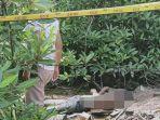 mayat-pria-tergeletak-di-hutan-bakau-atau-mangrove-111.jpg