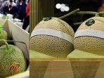 melon-yubari_20180528_041114.jpg