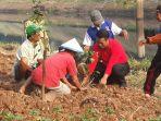 menteri-pertanian-andi-amran-sulaiman_20180714_111656.jpg