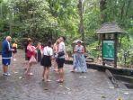 monkey-forest-ubud-sebelum-covid-19_2.jpg