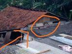 monyet-ekor-panjang-di-atap-rumah-warga-di-kampung-andir.jpg