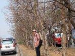 musim-kemarau-pohon-mengering-di-bogor_20150731_111818.jpg