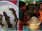 nasi-cicak-panggang-yang-cukup-populer-di-vietnam.jpg