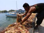 nelayan-rumput-laut-kepulauan-seribu_20190918_141102.jpg