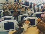 orang-kaya-arab-koleksi-puluhan-burung-elang_20170726_195913.jpg