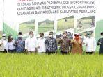 padi-biofortifikasi-seluas-2050-ha-di-desa-lenggerong.jpg