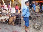 pasar-hewan-liar-di-indonesia.jpg
