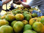 pedagang-jeruk-lokal-di-kabupaten-bandung_20200528_130938.jpg