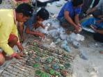 pelepasliaran-koral-di-perairan-pulau-serangan-denpasar-selatan_20160922_105912.jpg