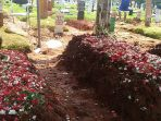 pemakaman-korban-laka-bus-maut-kitrans-di-ciloto_20170501_124523.jpg