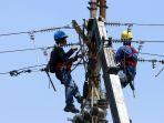 pemeliharaan-jaringan-listrik-pln-di-samarinda_20190829_225405.jpg