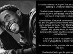 Mendiang Chadwick Boseman Dimakamkan di Negara Asalnya, California Selatan