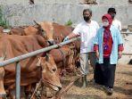 pemeriksaan-hewan-kurban-jelang-idul-adha_20210715_205442.jpg