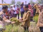 pemerintah-berkomitmen-tidak-impor-jagung_20161030_140528.jpg