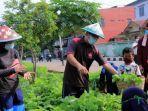 pemerintah-kota-tangerang-menerapkan-konsep-urban-farming.jpg