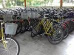 peminjaman-sepeda-di-ipb_20160312_184350.jpg