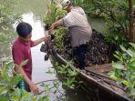 penanaman-bibit-mangrove.jpg
