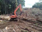 penebangan-hutan-rambah-hutan-adat_20181031_112039.jpg