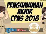 pengumuman-terakhir-cpns-2018.jpg
