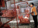 Kejutan Erick Thohir Saat Rombak Jajaran Direksi PT Pos Indonesia