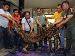 perdagangan-kulit-harimau-sumatera-digagalkan_20160930_132137.jpg
