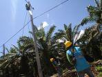 perluasan-jaringan-listrik-pln-di-pedalaman-desa-kalimantan_20180501_013758.jpg