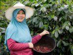 Kolaborasi Noka dan Alko Berdayakan Petani Kopi Kerinci
